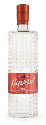 Kapriol Mt. Pelmo Dry Gin 41,7% 50cl
