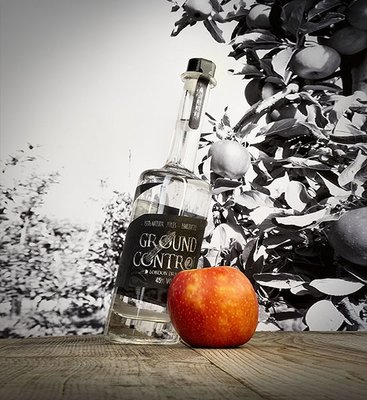 Ground Control Gin 2 - Appels 50cl